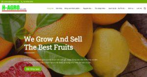 Thiết kế website Nông sản xuất khẩu